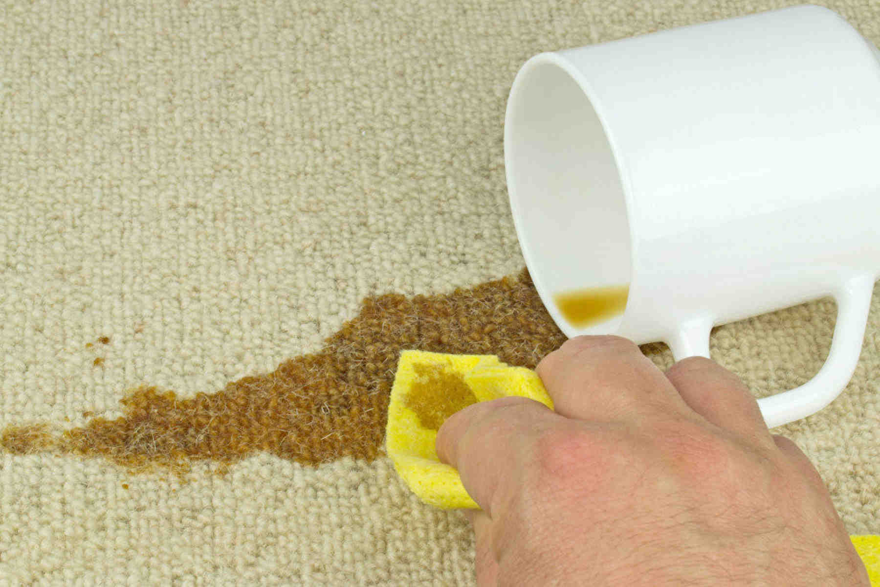 Spot-Stain Removal - Blot as much liquid as possible
