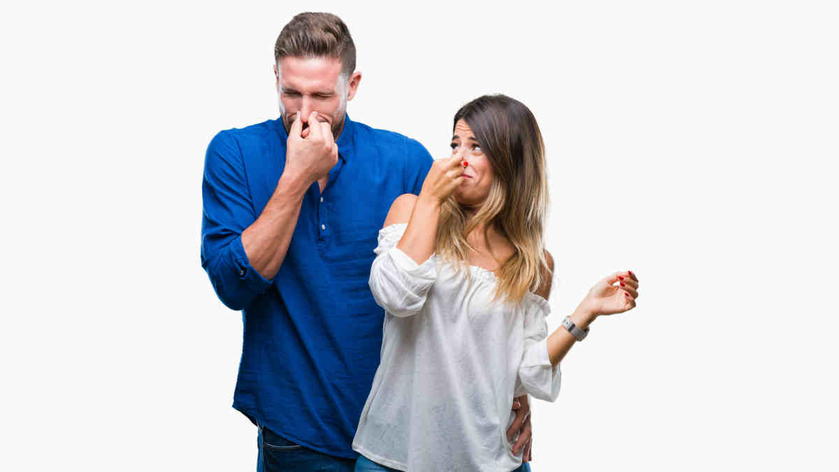 Tips On Removing Urine Odour from the exxperts at Grime Fighters Cleaning